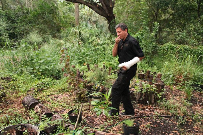 Culhane walks through the garden he is growing behind his home. He uses some of the ...