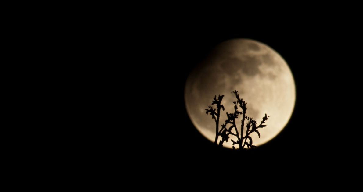 A partial lunar eclipse on April 25, 2013. Astronomers can predict when a lunar eclipse will ...