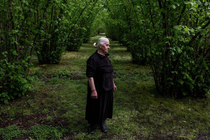 Sveta Tabagua in her hazelnut fields in Otobaya-Hoshta, Abkhazia.