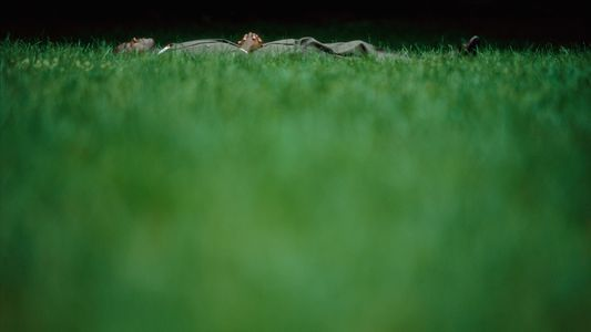 17 Restful Photos of Sleep Around the World
