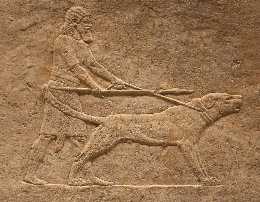 How dogs were celebrated in the ancient world