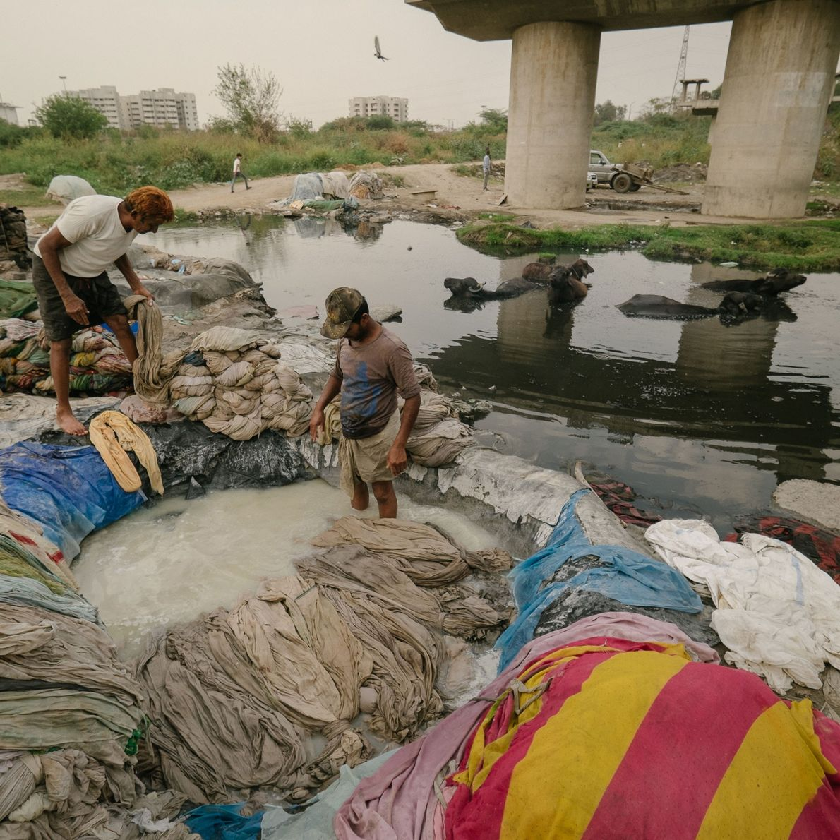 Men bleach laundry before rinsing it in the polluted Yamuna River.