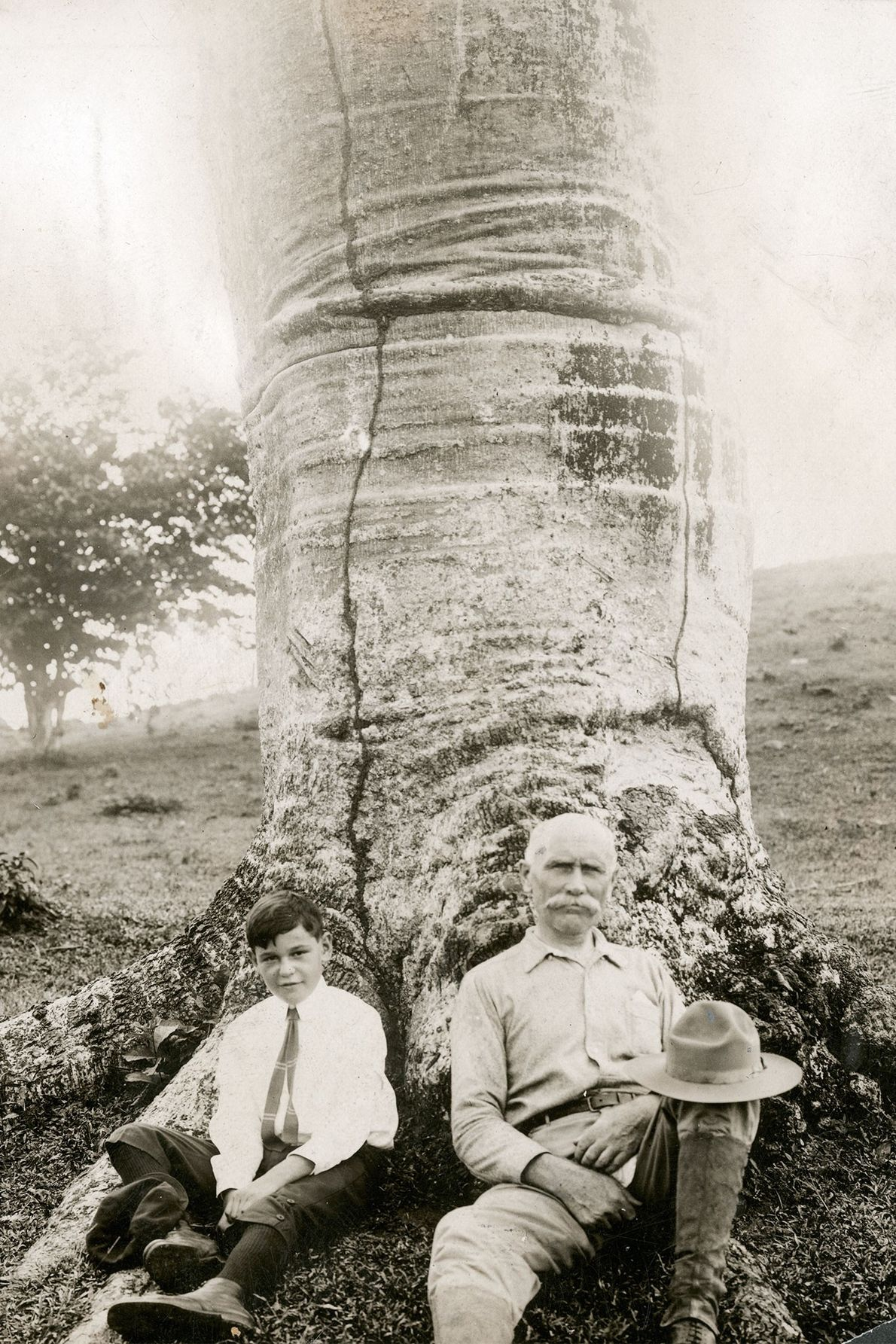 A writer and his son sit at the base of a cuipo tree in Panama in …