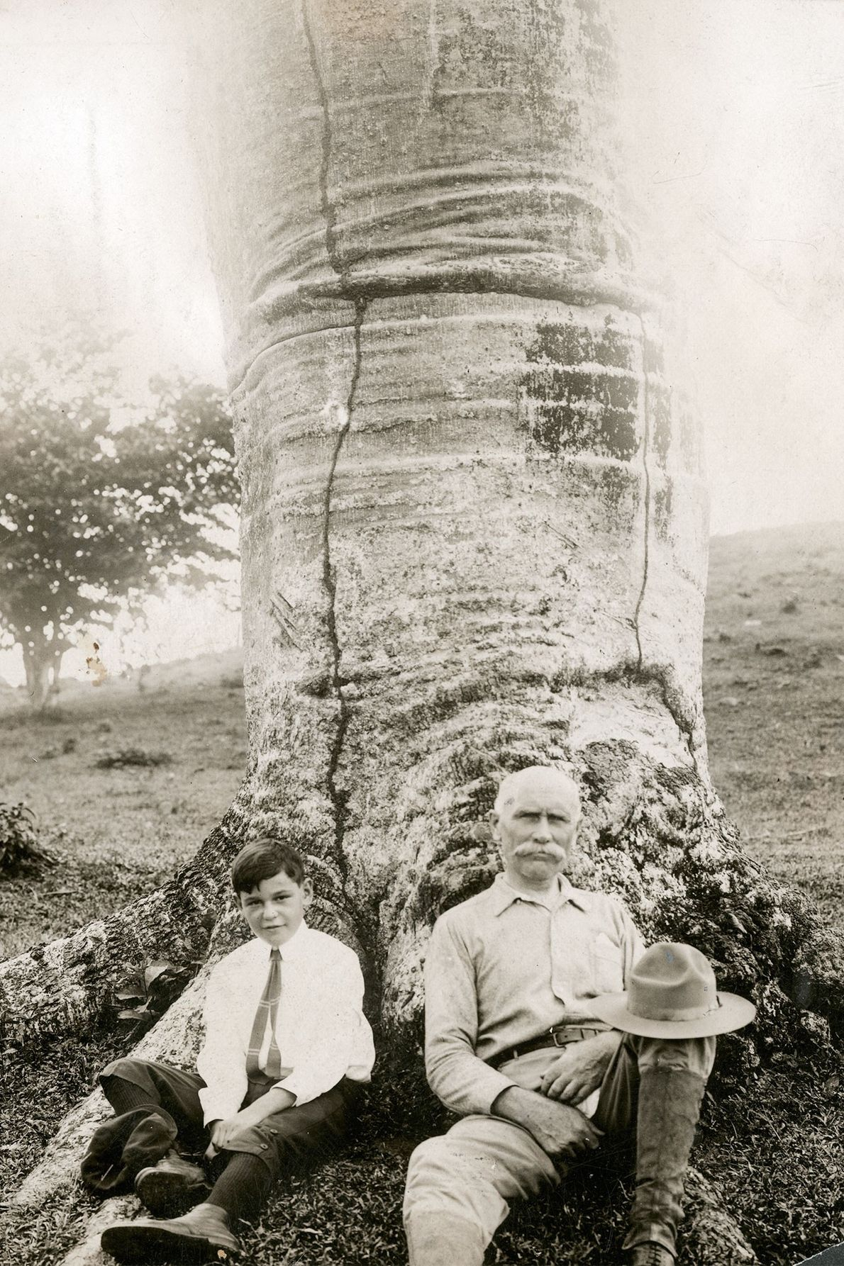 A writer and his son sit at the base of a cuipo tree in Panama in ...