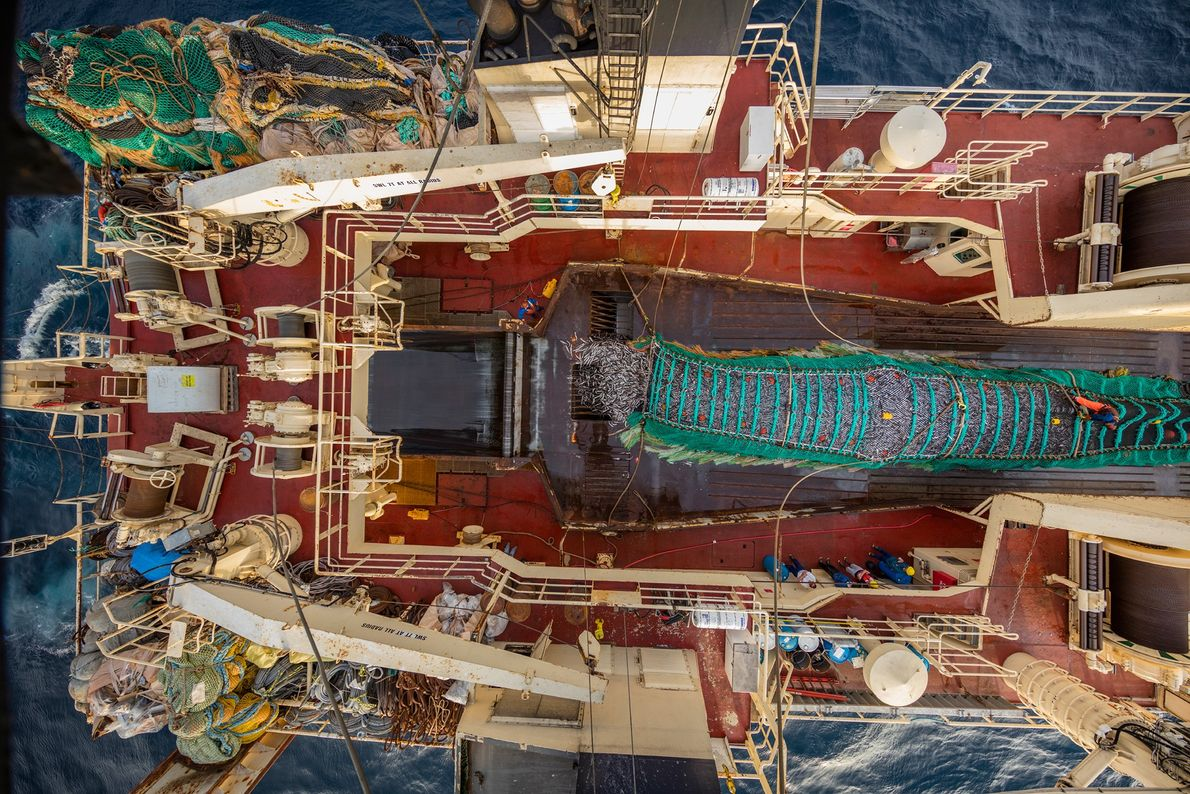 Some 30 miles off the coast of Oregon, the C/P Alaska Ocean hauls in a 65-ton ...