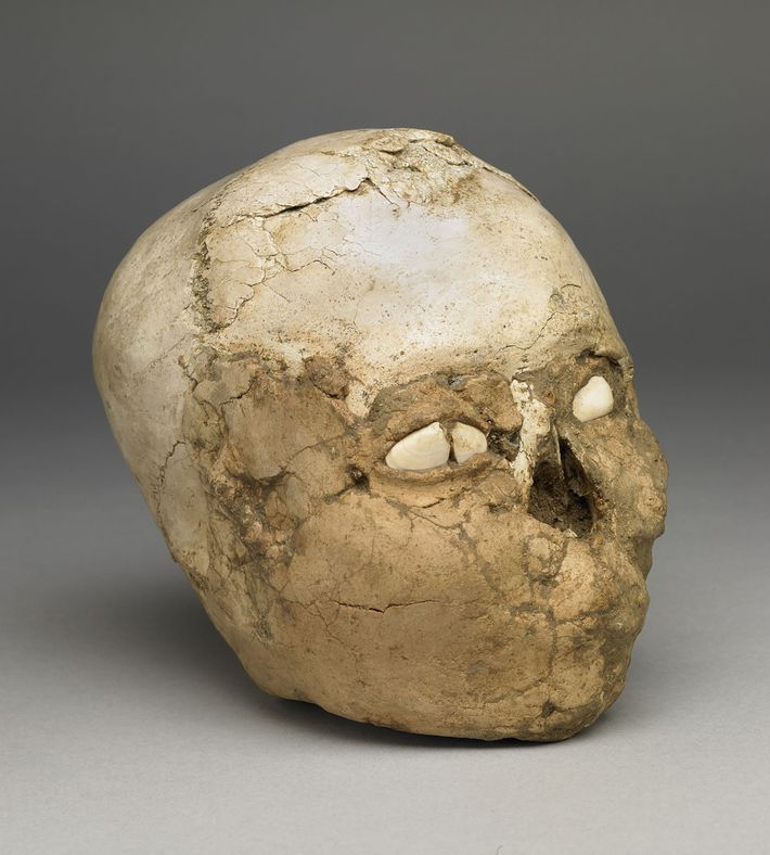 The 9,500-year-old Jericho Skull contains a human cranium packed with soil and covered with plaster to ...