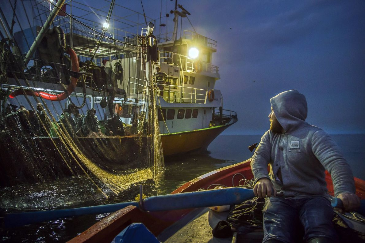 Your Shot photographer Ibrahim Aysündü photographed this scene while a small boat fisherman encounters a large ...