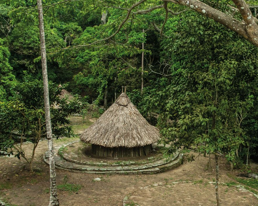 Tairona houses were conical, with wood walls and straw roofs. They were laid out on artificial ...