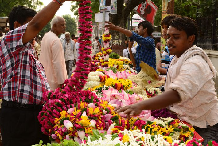 A Street vendor in Barsana is busy selling colourful flowers, which are used in abundance during ...