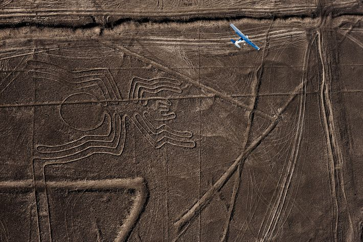 In the coastal desert of southern Peru, sprawling figures etched on the land have inspired wonder ...