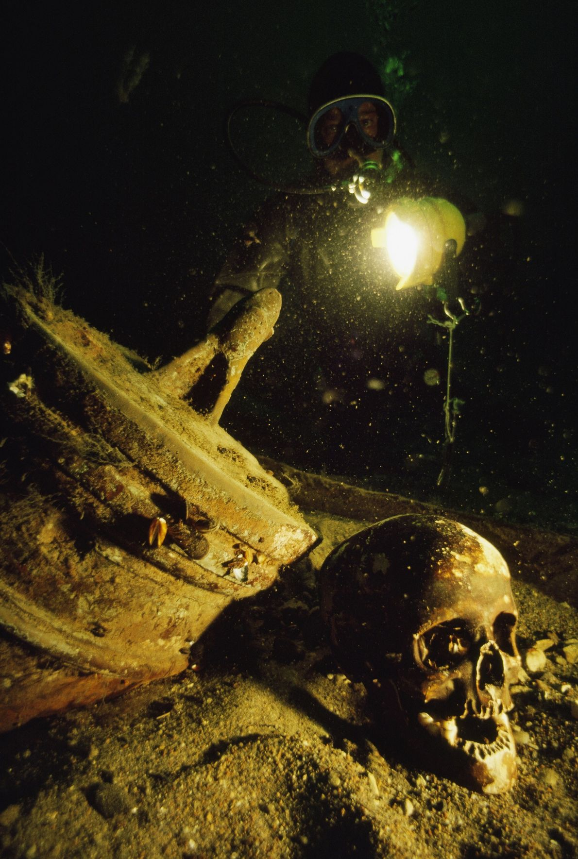 The skull of a passenger on a shipwrecked 17th-century Swedish warship lies beside a cannon at ...