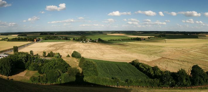 Wellington took advantage of landscape features in his battles. At Waterloo, shown in this panorama, he ...