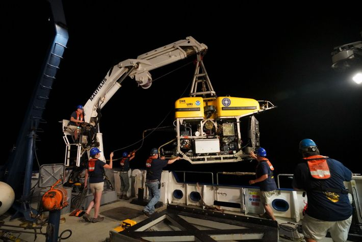 A remotely-operated vehicle (ROV) named Hercules is launched from the deck of Nautilus. The ROV is ...