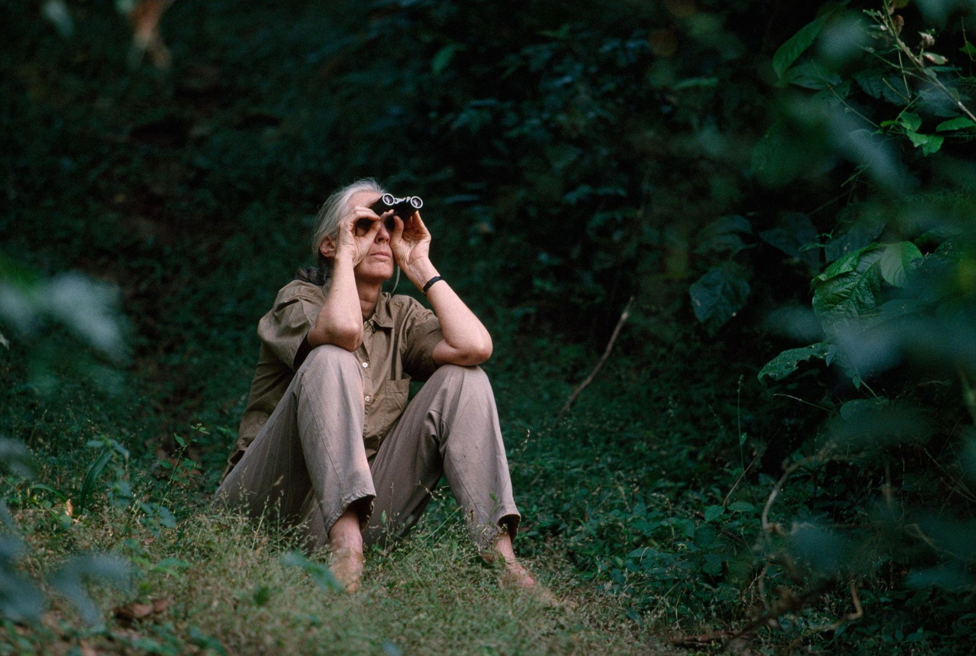 <p>Jane Goodall no longer spends much time at Gombe Stream National Park because of her globe-trotting conservation efforts. When she visits, she still finds great joy in watching the chimps.</p> <p>&nbsp;</p>