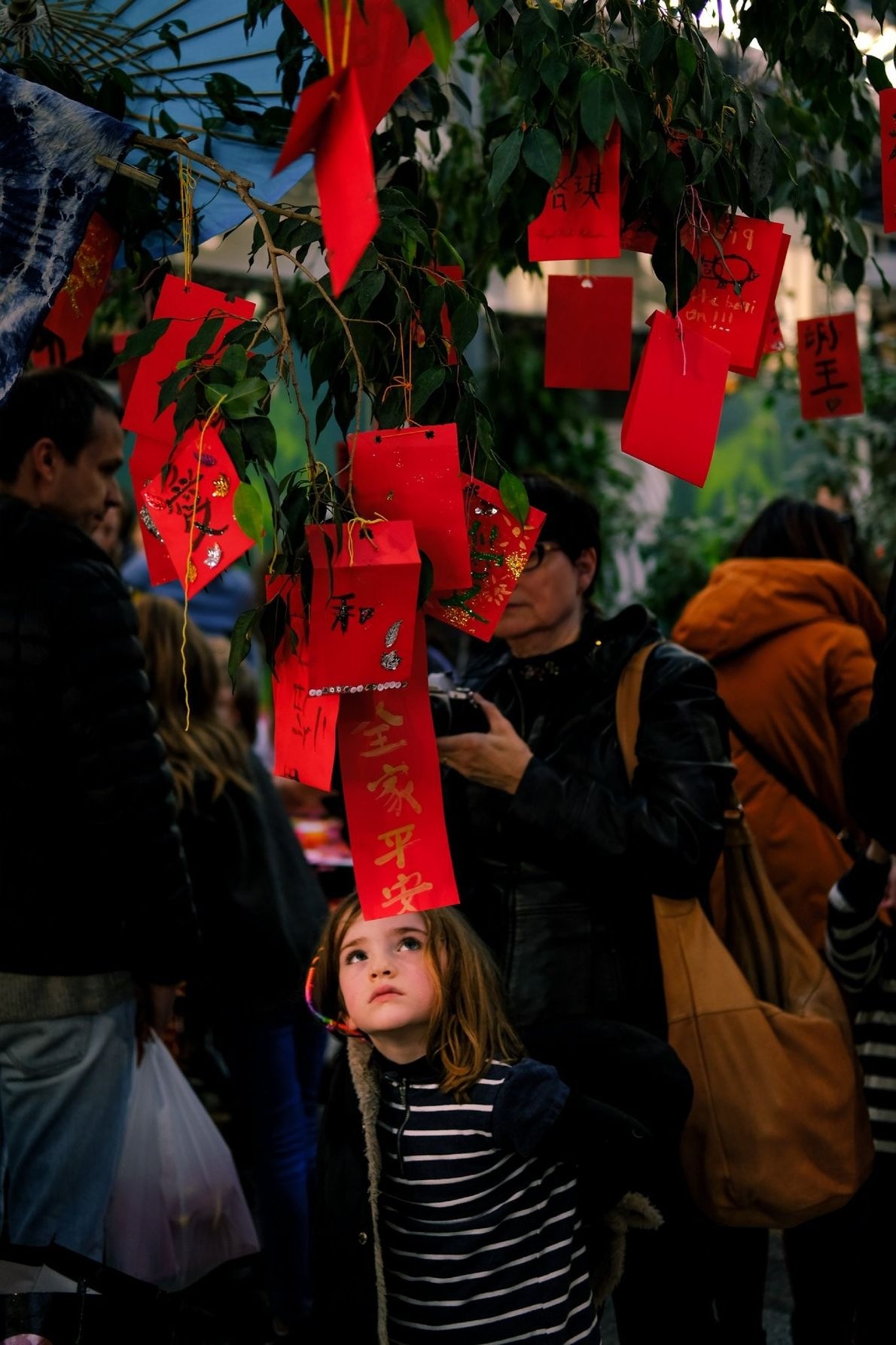 A young girl looks at Chinese calligraphy strung into a tree in Dublin, Ireland from the ...