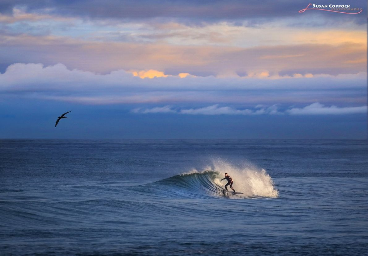 Your Shot photographer Susan Coppock documented this surfer while catching a wave off the coast of ...