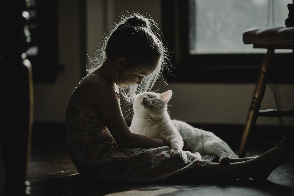 Your Shot photographer Amanda Thomason documented this moment between her daughter and her cat sitting on ...