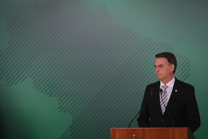 Jair Bolsonaro, Brazil's president-elect, ran in part on a campaign of developing more of the Amazon, ...