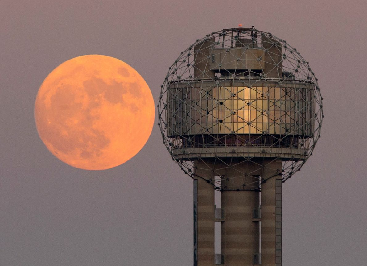 A supermoon moon seems to mirror the rounded top of Reunion Tower in Dallas, Texas, in ...
