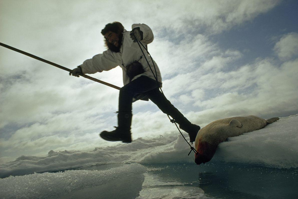 An Eskimo hunter jumps between ice floes on the Chukchi Sea near Point Hope, Alaska.