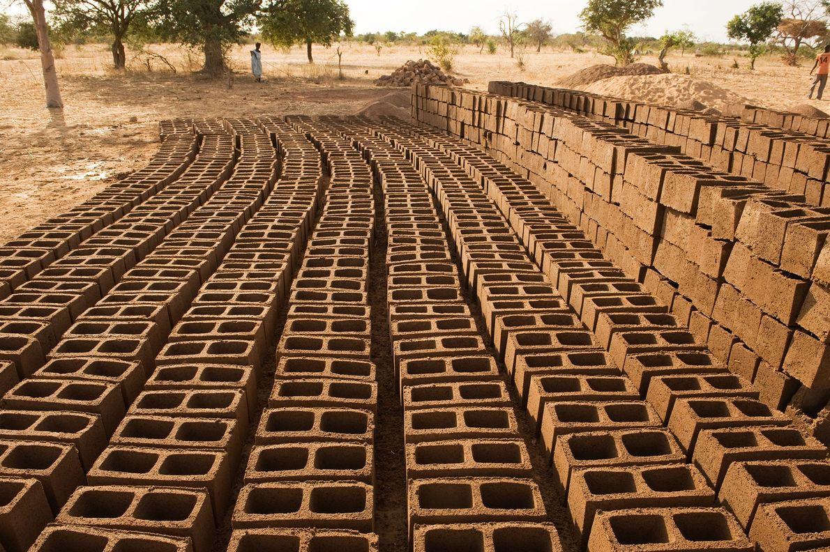 Mud bricks dry on the farm of Yacouba Sawadogo, who lives in northern Burkina Faso. Sawadogo ...