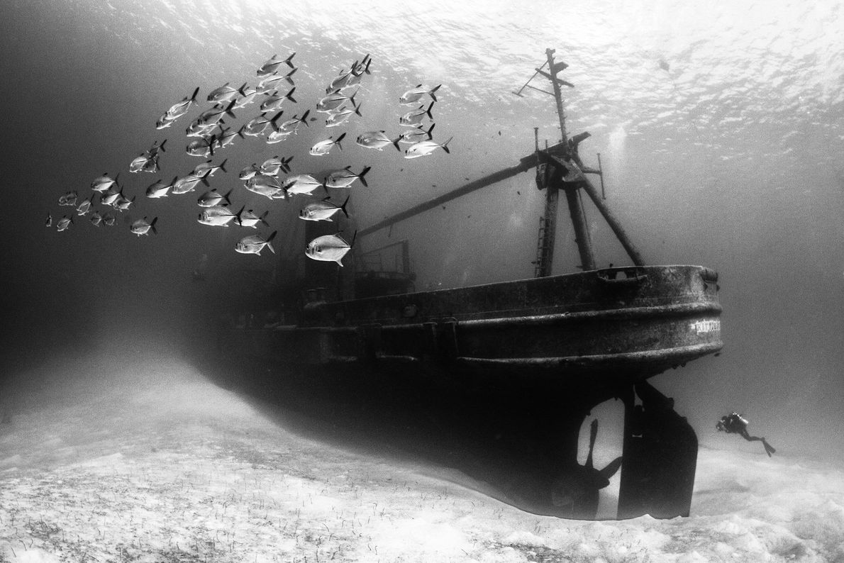 USS Kittiwake Shipwreck