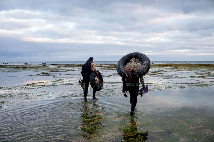Lugging inner tubes to be used as flotation devices, two divers head down to the water ...