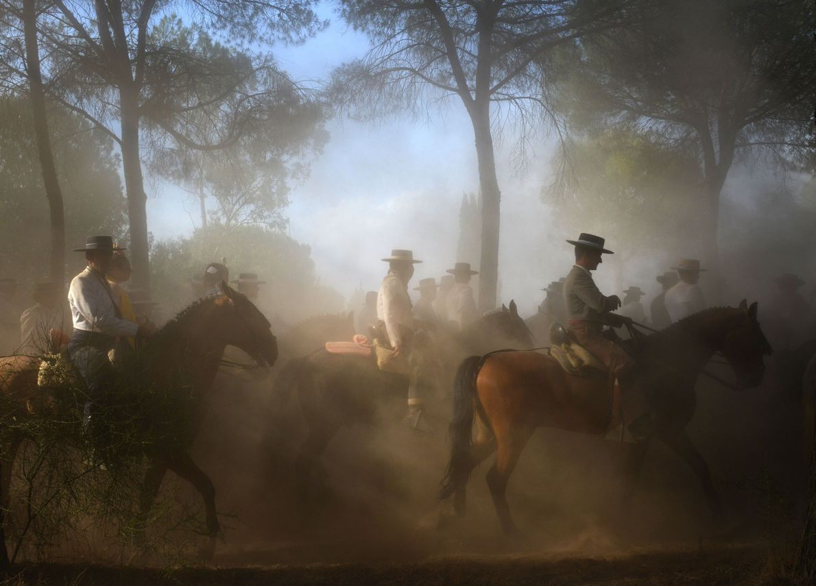 In the small town of El Rocío, in Andalusia, Spain, an annual pilgrimage takes place on ...