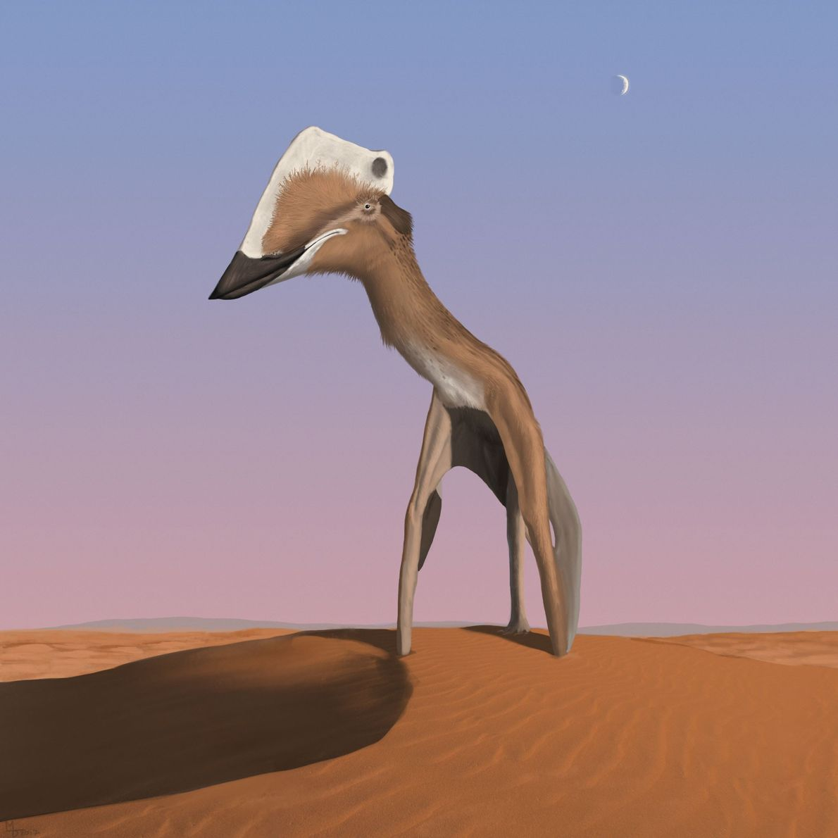 """""""Giant Takes a Gander"""" Some azhdarchid pterosaurs were massive creatures, with wingspans comparable to those of small ..."""