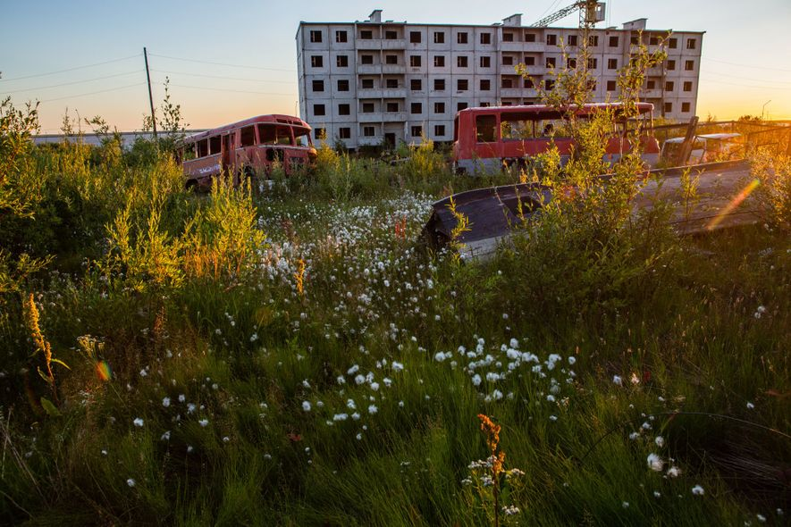 Foxtail, fireweed and cotton flowers are ubiquitous in Cherskiy, Russia, during the summer. The town is built entirely on permafrost. Buildings are constructed on concrete stilts with their pipes above ground to account for changes in the topography as permafrost thaws.