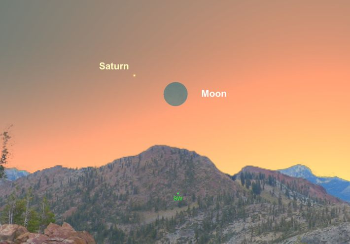 The crescent moon will hang near Saturn close to the western horizon on December 8.
