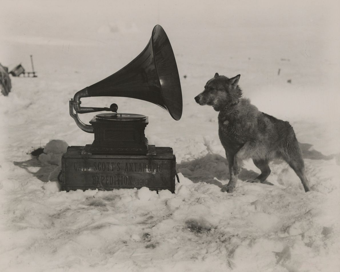 Captain Robert Scott took a gramophone on his South Pole expedition to entertain his men, but ...
