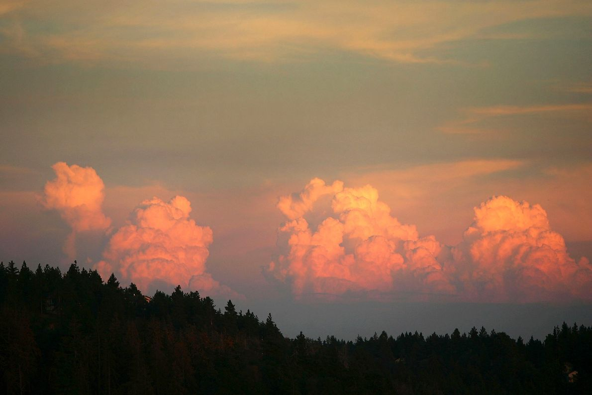 Seasonal afternoon thunderheads, which often result in lightning-caused wildfires, rise on August 1, 2005 near Big ...