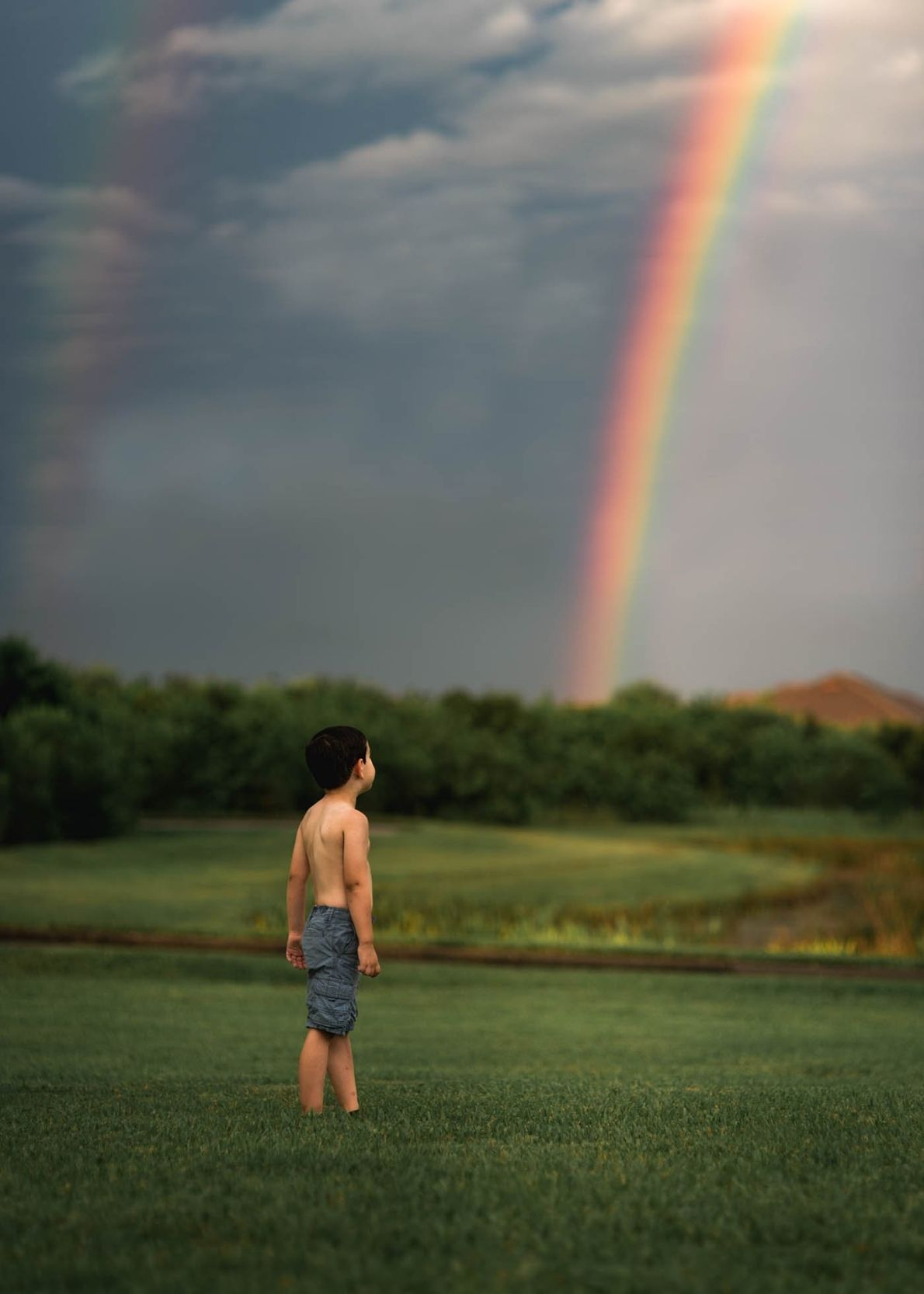 """""""After a rain in Florida, we saw a fleeting rainbow and ran outside to capture its ..."""