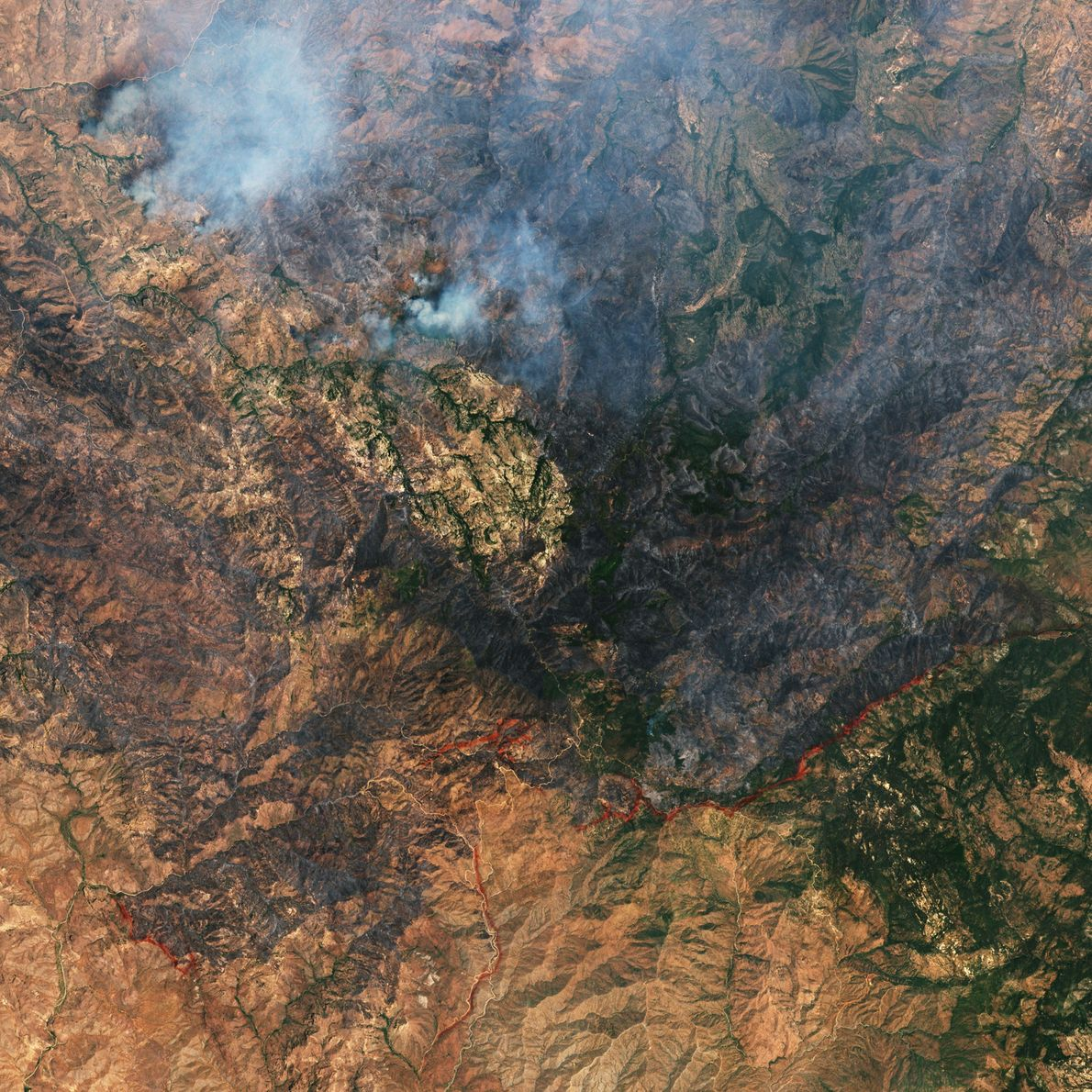 Since June 8, a huge wildfire has destroyed swaths of vegetation east of Phoenix, Arizona. Firefighters ...