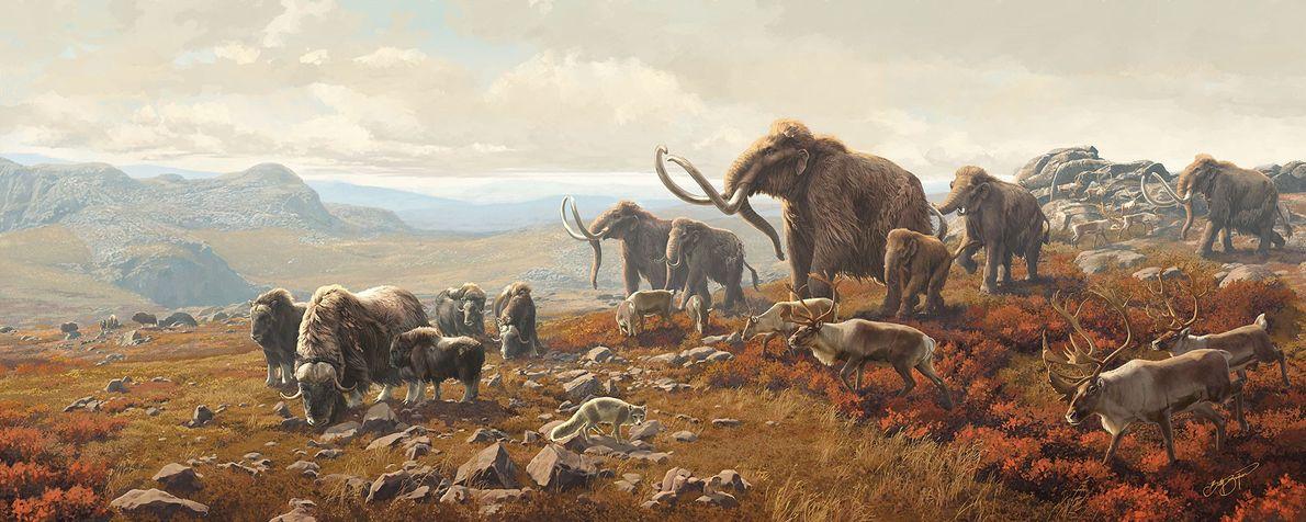 """""""Tundra Mural"""" In a scene created for a museum diorama, U.S. artist Beth Zaikin imagines a vast ..."""