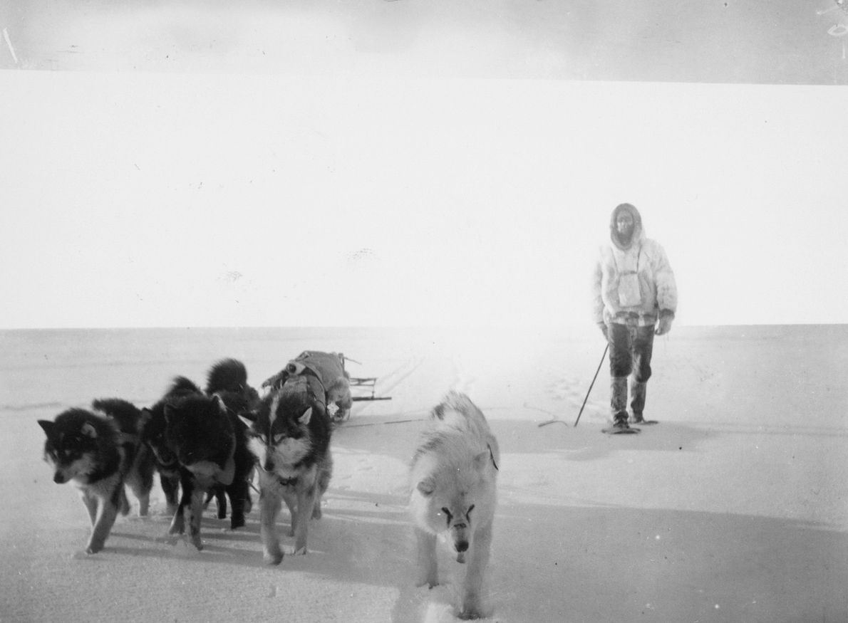 A small dog team pushes ahead on the inland ice cap of Greenland. The photo was ...