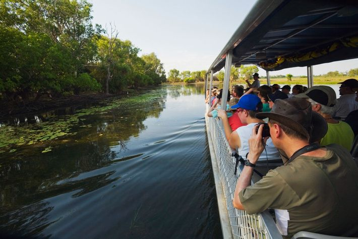 A cruise in Yellow Water wetlands soaks up Australia's unique wildlife.