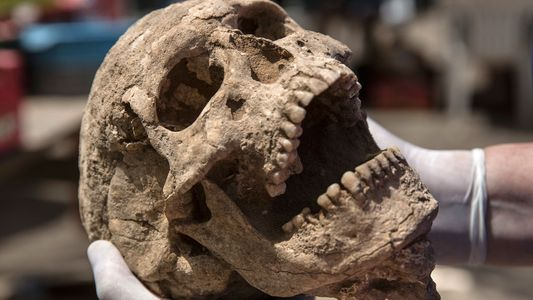 Discovery of Philistine Cemetery May Solve Biblical Mystery
