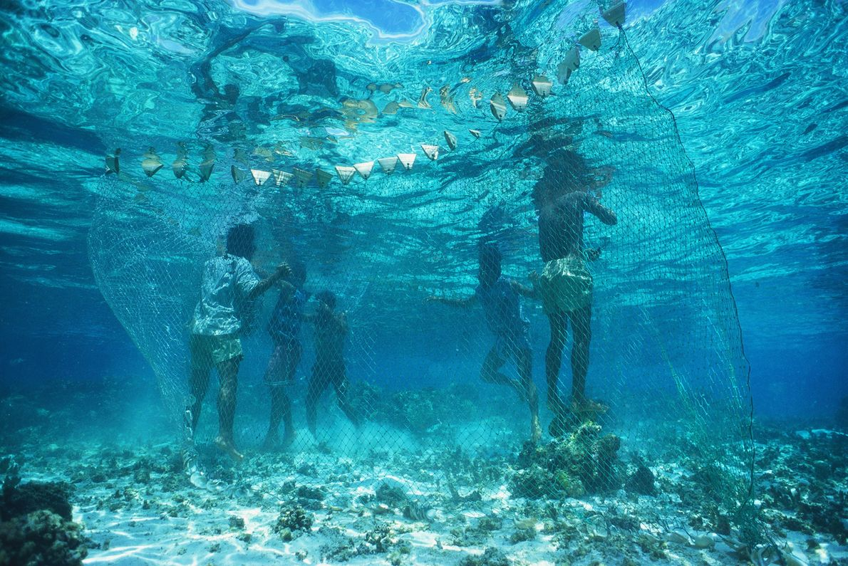 Villagers share their island's only fishing net to catch food off Egum Atoll, Papua New Guinea.