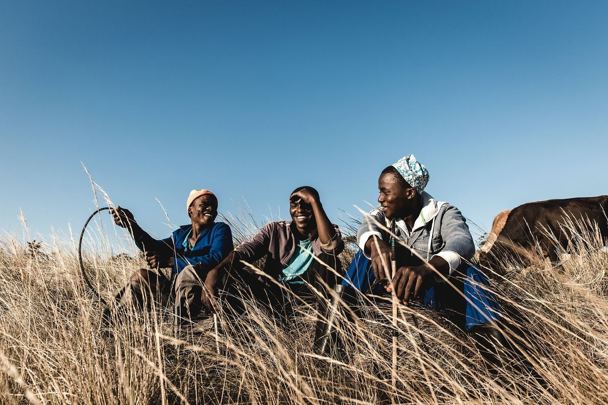 """""""Whilst the cattle were grazing, the young cattle herders sat in the afternoon sun and shared ..."""
