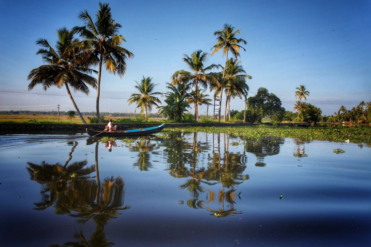 Your Shot photographer Sneha Chikhale documented this scene of green and blue in Alleppey, India.