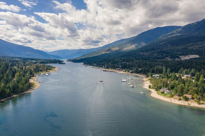 Nelson, slung along the shore of Kootenay Lake and surrounded by the peaks of the Selkirk ...