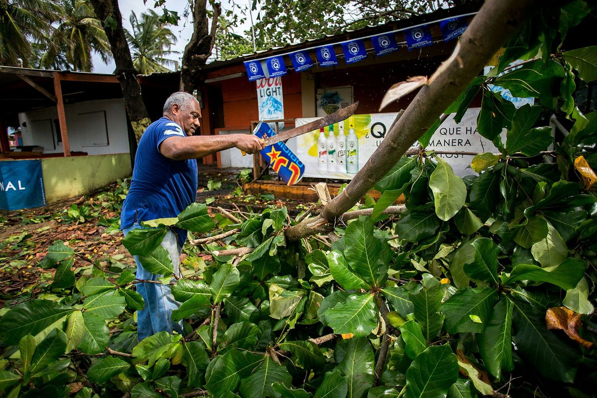 A man removes tree limbs in Piñones, Puerto Rico on September 7.