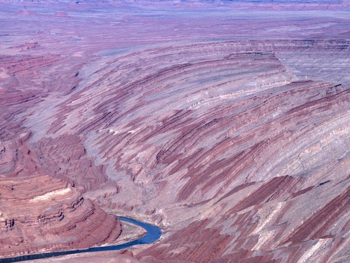 Raplee Ridge, part of the Monument Upwarp in southeastern Utah, is a long, narrow, folded anticline ...
