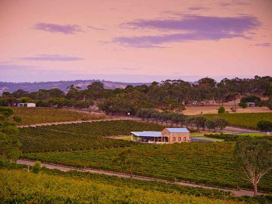 South Australian vineyards championing sustainability