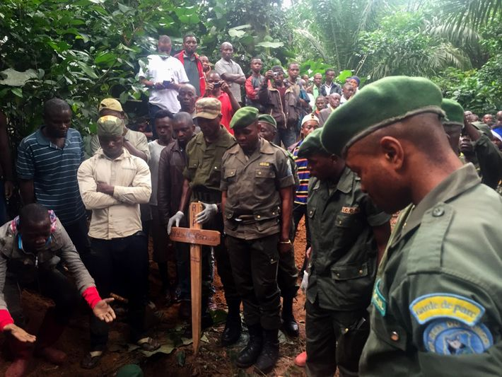 Okapi Wildlife Reserve park rangers watch as the bodies of their colleagues are lowered into the ...