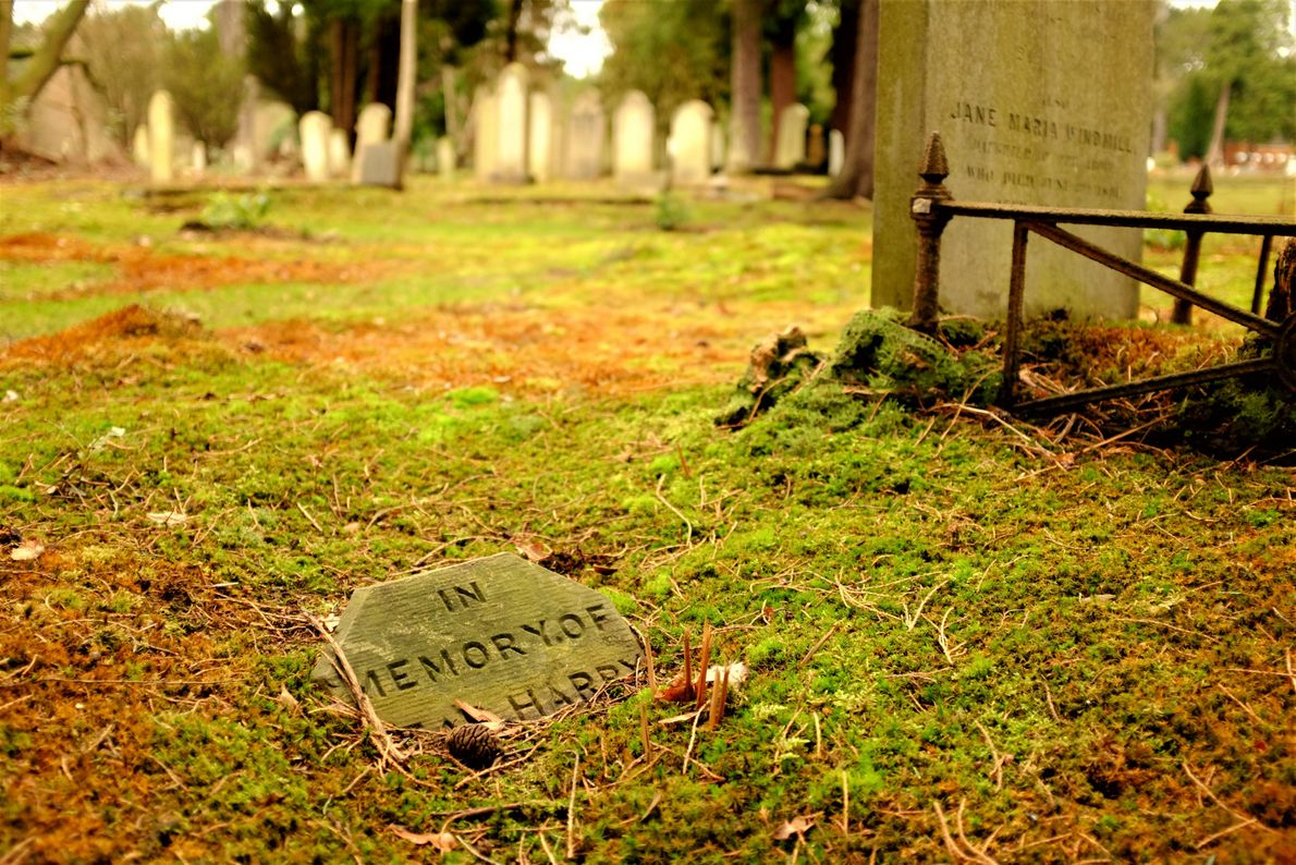 """Katie Thornton: """"Cemeteries may be more diverse and representative than many public repositories of history, such ..."""