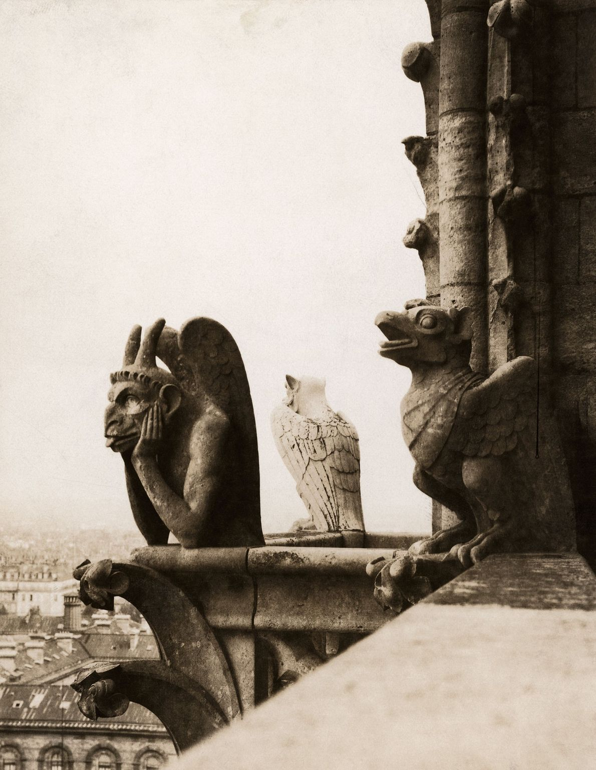 A gargoyle called Le Stryge—or 'the vampire'—sits atop the cathedral's north tower. It was added during ...