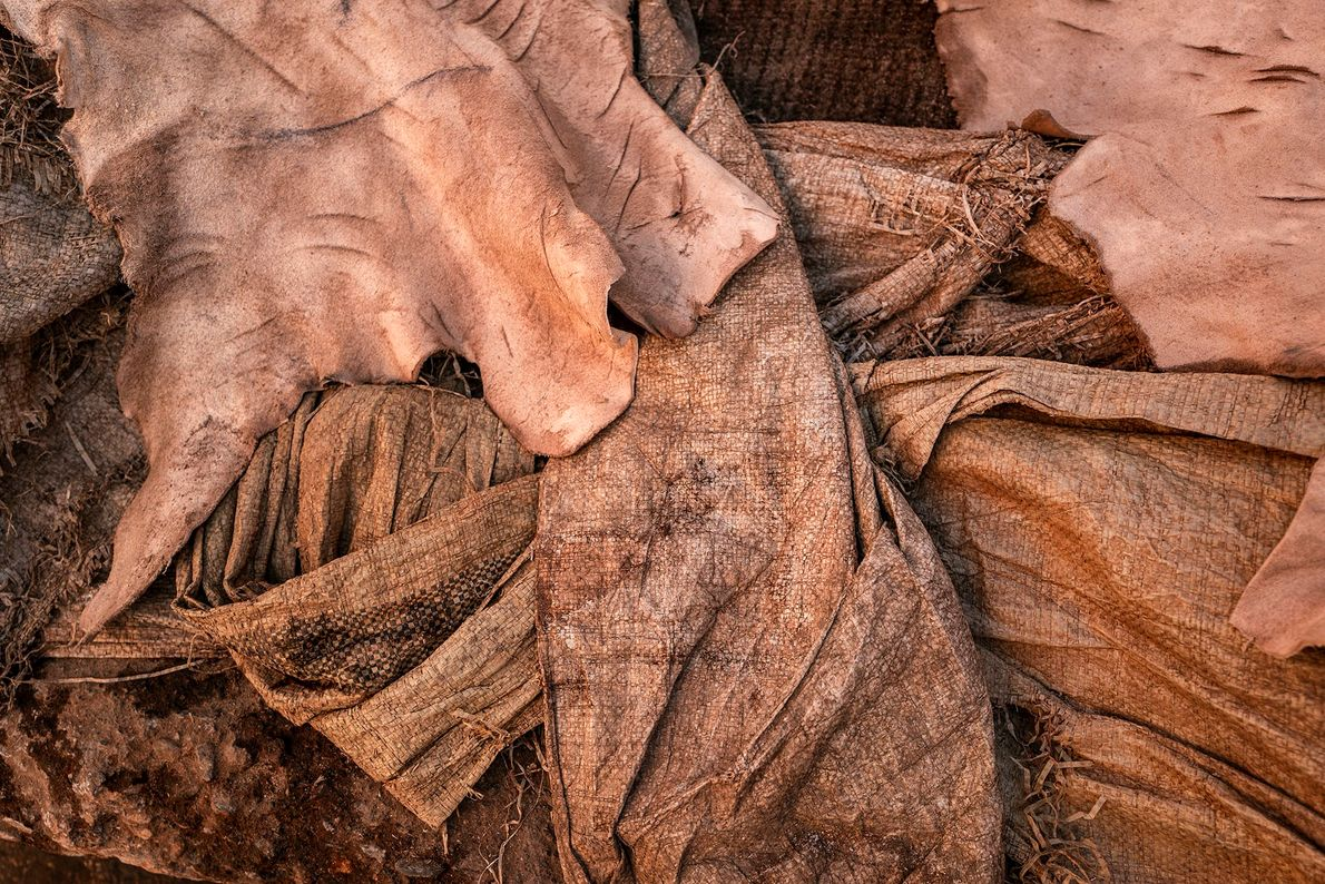 Hides air drying in one of the Marrakech tanneries. At the end of the tanning process, ...